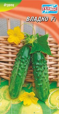 Семена огурцов пчелоопыляемых Владко F1 20 шт., фото 2