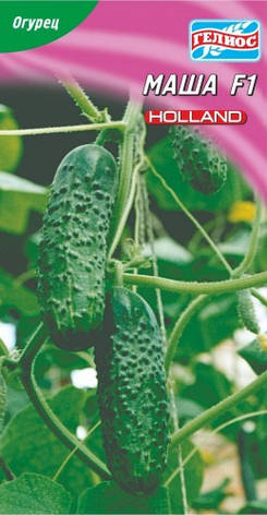 Семена огурцов  партенокарпических Маша F1 10 шт., фото 2