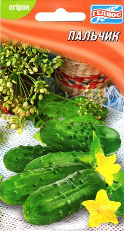 Семена огурцов пчелоопыляемых Пальчик 40 шт., фото 2