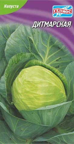Семена капусты белокачанной Дитмарская 150 шт., фото 2