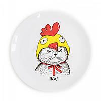 Подарочная тарелка «КО!» с котиком