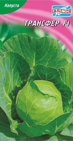 Семена капусты белокачанной Трансфер F1 50 шт., фото 2