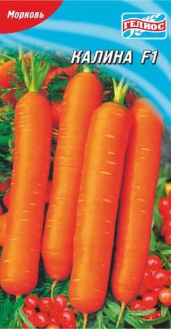Семена моркови Калина F1 1000 шт., фото 2