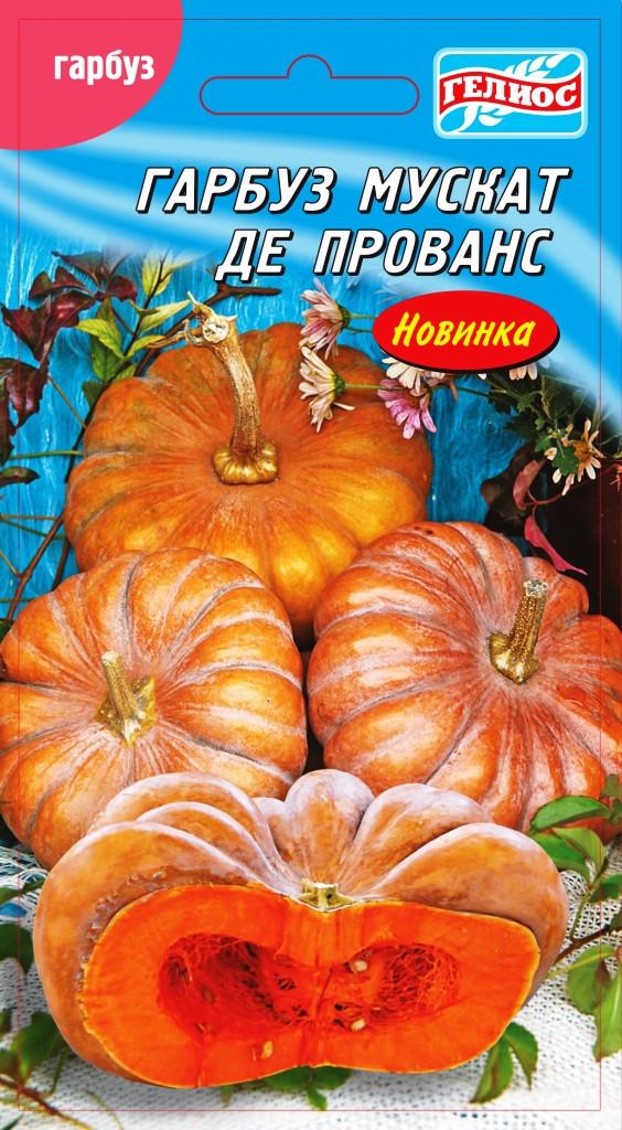 Семена тыквы Мускат де Прванс 10 шт.