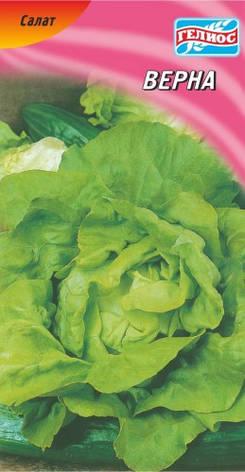 Семена салата Верна 1000 шт., фото 2