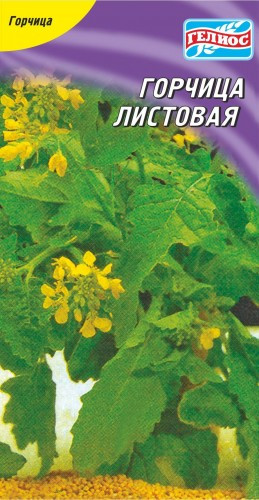 Семена горчицы салатной Зорянка 200 шт.