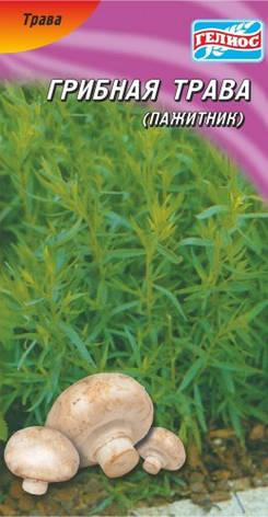 Семена грибной травы Пажитник 0,5 г, фото 2