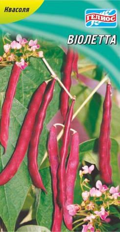Семена фасоли вьющаяся спаржевая Виолетта 20 шт., фото 2