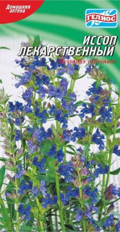 Семена Иссопа Лекарственный 0,2 г, фото 2
