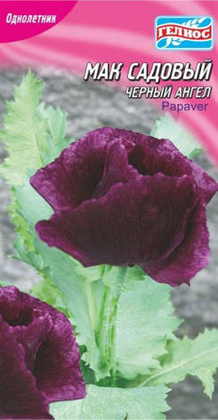 Мак садовый Черный ангел 0,1 Г, фото 2