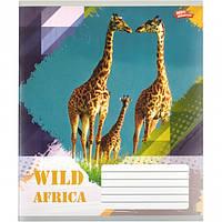 """Тетрадь цветная 18 листов, линия """"Африканские животные"""""""