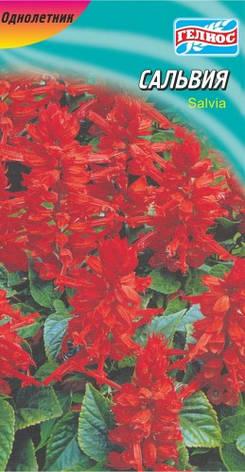 Сальвия красная 0,1 г, фото 2