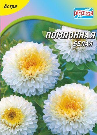 Астра Помпонная белая 100 шт.