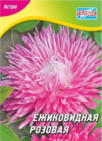 Астра ежиковидная розовая 100 шт.