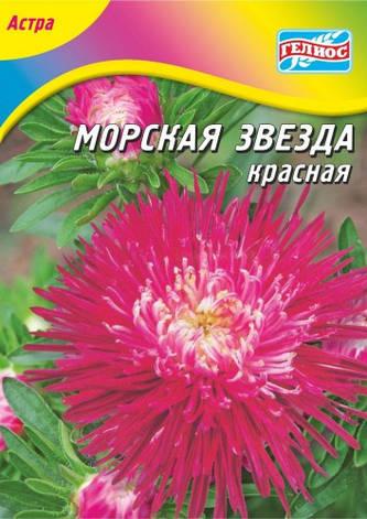 Астра Морская звезда красная 70 шт., фото 2