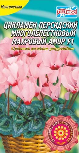 ЦИКЛАМЕН МАХРОВИЙ АМОР F1 5 драже