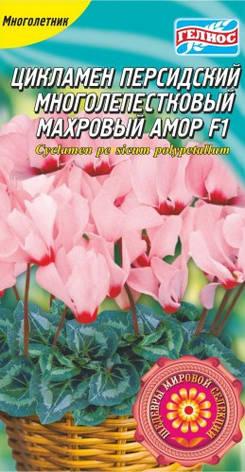 ЦИКЛАМЕН МАХРОВИЙ АМОР F1 5 драже, фото 2