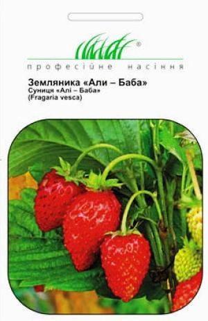 Семена земляники безусой Али Баба в 0.2 г., фото 2