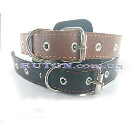 Кожаный ошейник для собак ширина 20 мм для маленьких собак
