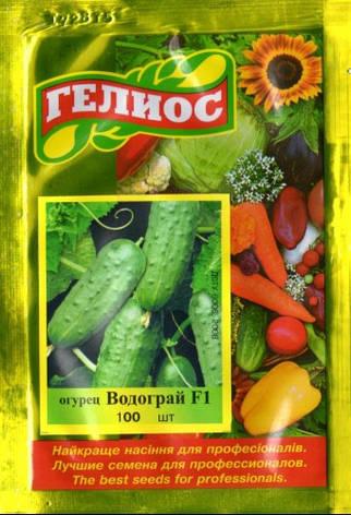 Семена огурцов пчелоопыляемых Водограй F1 100 шт., фото 2