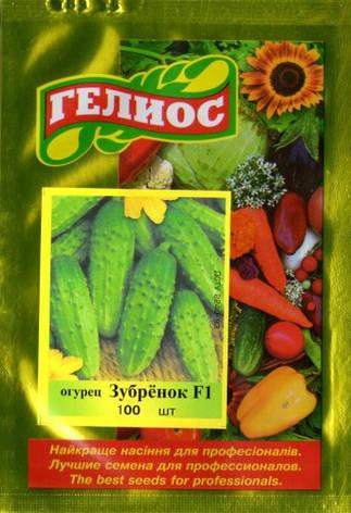 Семена огурцов пчелоопыляемых Зубренок F1 100 шт., фото 2