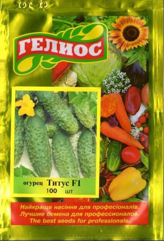 Семена огурцов пчелоопыляемых Титус F1 100 шт., фото 2