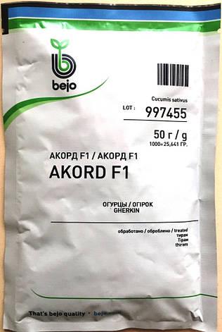Семена огурцов пчелоопыляемых Акорд F1 50 г, фото 2