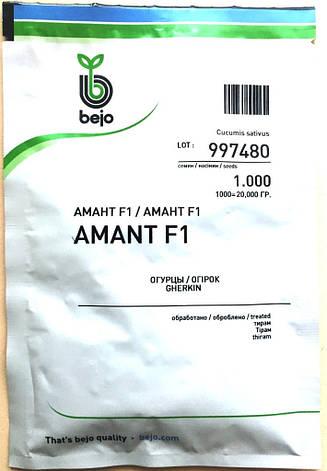 Семена огурцов  партенокарпических Амант F1 1000 шт., фото 2