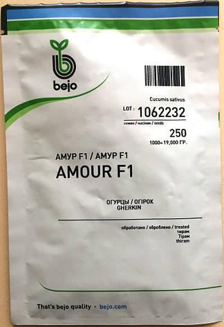 Семена огурцов  партенокарпических Амур F1 1000 шт., фото 2