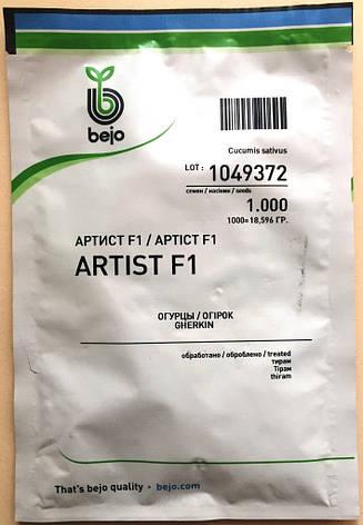 Семена огурцов  партенокарпических Артист F1 1000 шт., фото 2