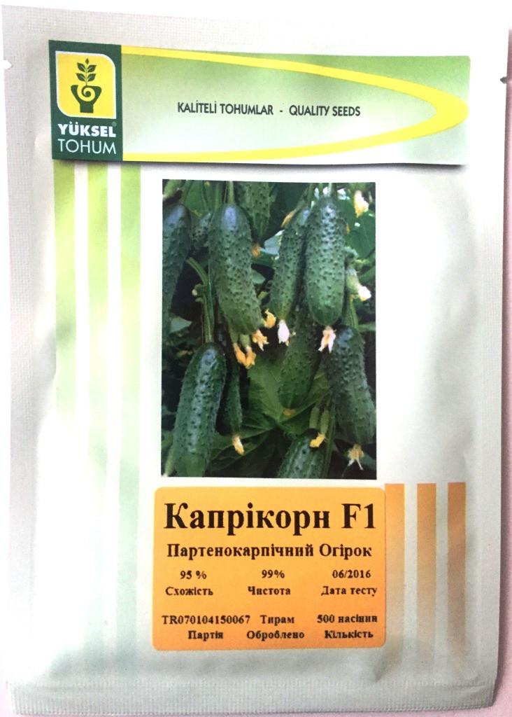 Семена огурцов  партенокарпических Каприкорн F1 500 шт.