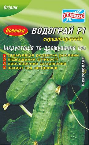 Семена огурцов пчелоопыляемых Водограй F1 25 шт. Инк., фото 2