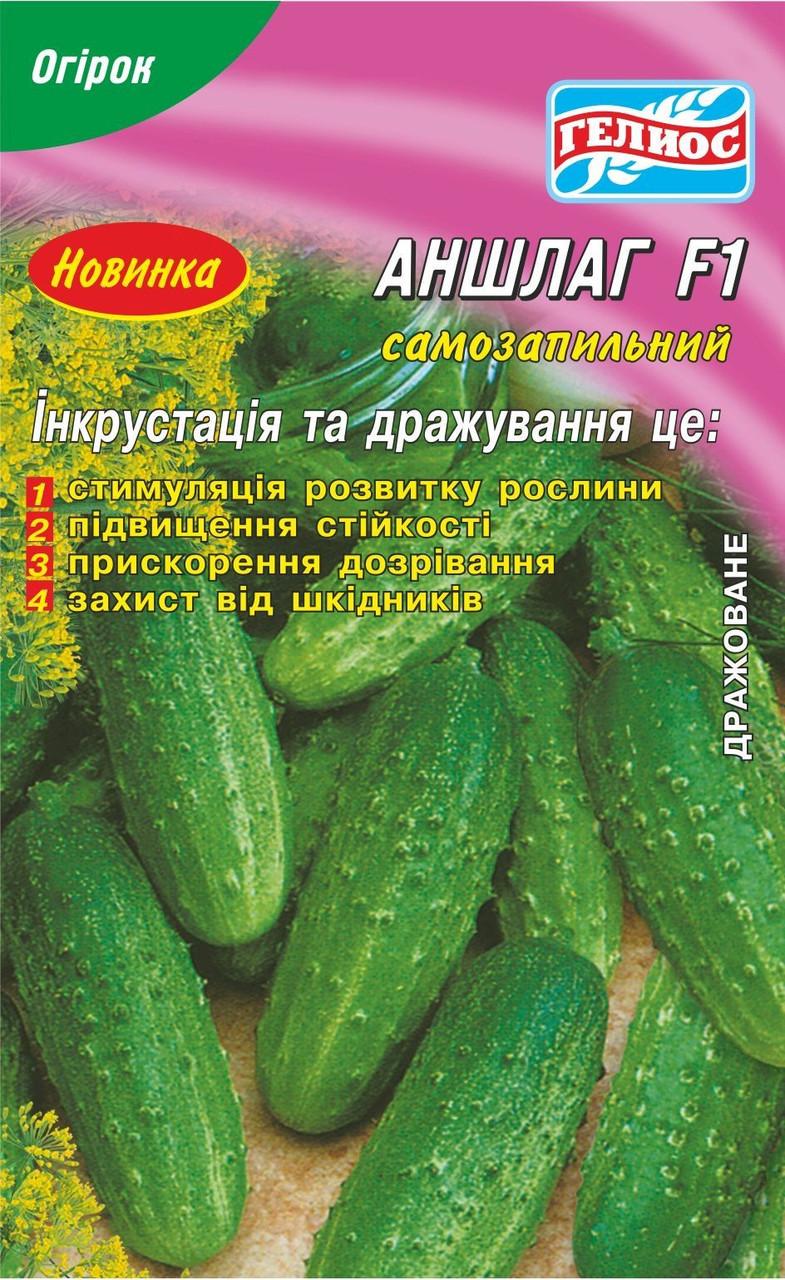 Семена огурцов  партенокарпических  Аншлаг F1 20 шт. Инк.