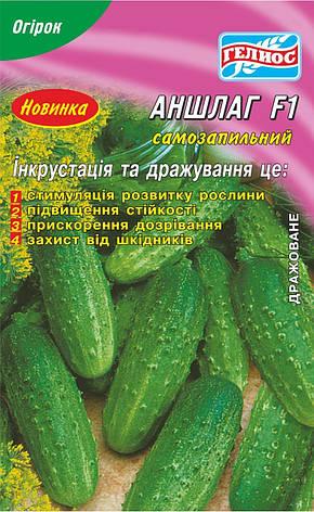 Семена огурцов  партенокарпических  Аншлаг F1 20 шт. Инк., фото 2