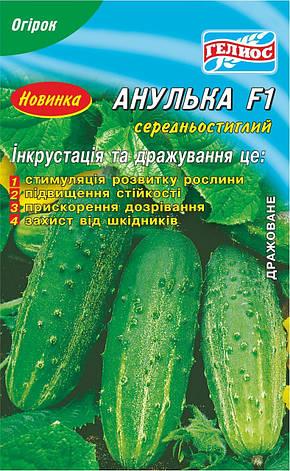 Семена огурцов пчелоопыляемых АнулькаF1 25 шт. Инк., фото 2
