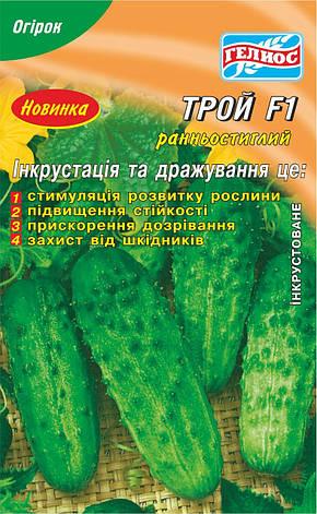 Семена огурцов пчелоопыляемых Трой F1 50 шт. Инк., фото 2