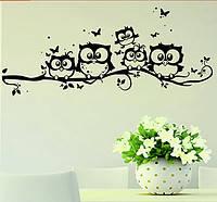 Наклейка виниловая Совята на стену