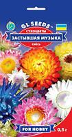 Цветочная смесь Сухоцветы Застывшая музыка