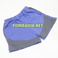 Детские шорты р. 92-98 для мальчика тонкие ткань СТРЕЙЧ-КУЛИР 95% хлопок, 5% эластан 3680 Синий 92