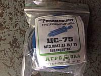 Ремкомплект ЦС-75