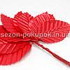 Листочки (букет 10 шт) красный цвет