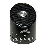 Портативная колонка Bluetooth WS-Q10, фото 1