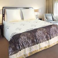 Комплект постельного белья ТЕП евроразмер Конго 870