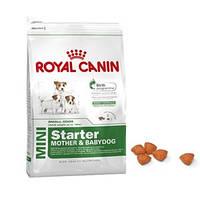 Royal Canin Mini Starter 8.5 кг