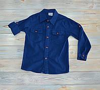Рубашка синяя с длинным рукавом 104 см (104, 110, 116, 122 см) на мальчика 4 лет, Terry, Турция