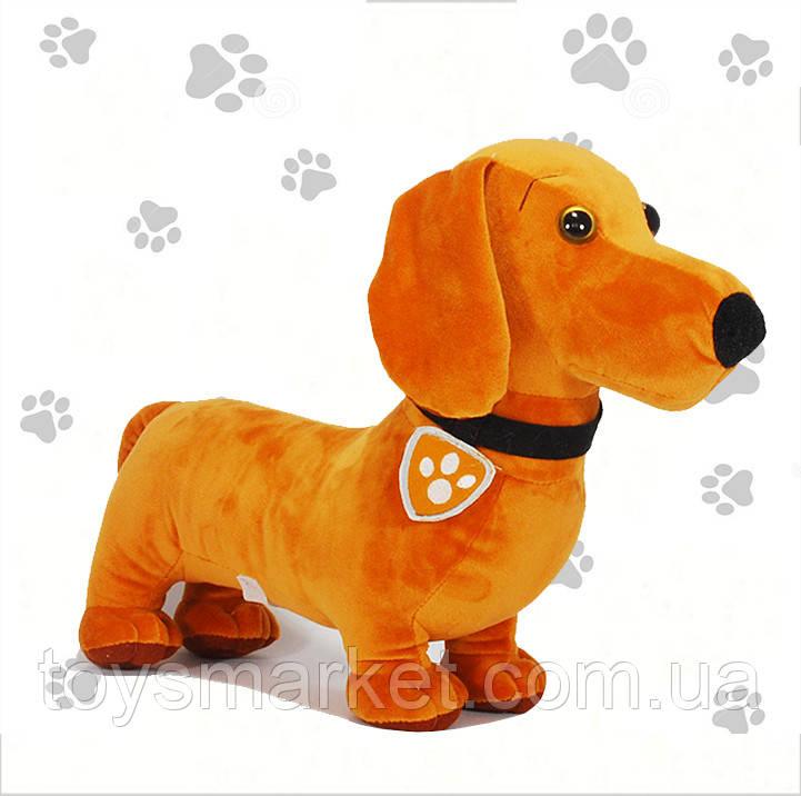 Мягкая игрушка щенок такса Товарищ