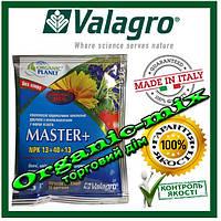 """Комплексное удобрение Master 13.40.13 (максимум фосфора) 25 г ТМ """"Valagro"""" Original c хелатными микроэл., фото 1"""