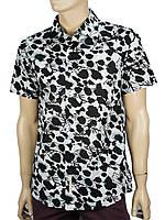 Рубашка мужская с коротким рукавом XL