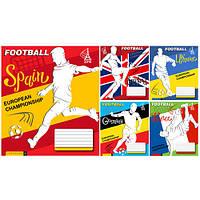 """Тетрадь 36 листов/клетка 794358 """"Football"""", 15 шт. в упаковке (Y)"""