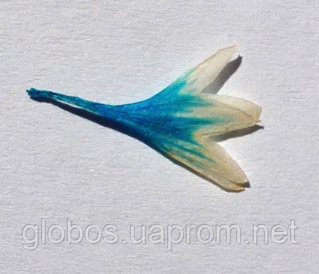 Сухоцветы для дизайна ногтей RENEE IF06-09, фото 2